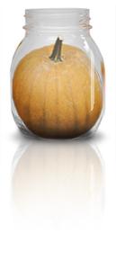 Jar Pumpkin 2